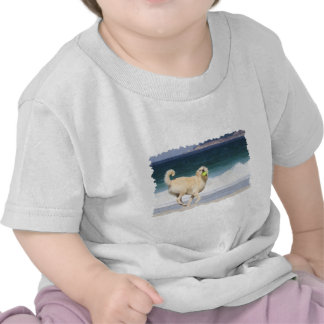 Labradoodle - Happy Day on the Beach Tee Shirts