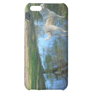 Labradoodle in the Park Case For iPhone 5C