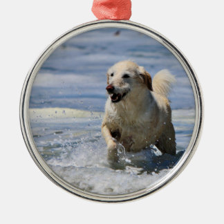 Labradoodle - Izzy Metal Ornament