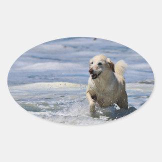 Labradoodle - Izzy Sticker