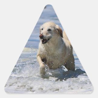 Labradoodle - Izzy Triangle Stickers