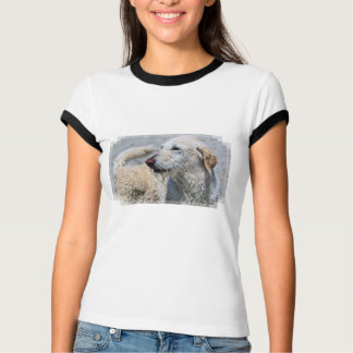 Labradoodle - Izzy T-shirt