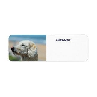 Labradoodle Label