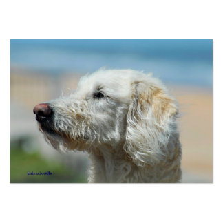 Labradoodle Large Business Card