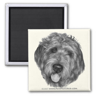 Labradoodle 2 Inch Square Magnet