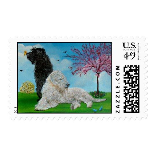Labradoodle Spring Postage