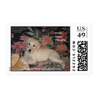 Labradoodle Stamps
