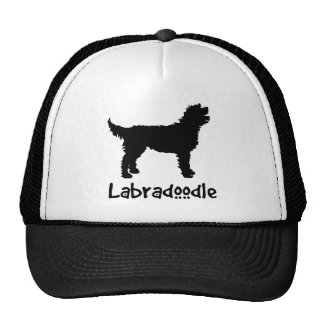 Labradoodle w/ Cool Text Hat