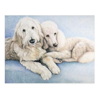 Labradoodle y postal del arte del perro de caniche