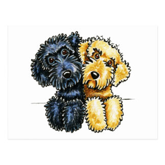 Labradoodles Black Yellow Lined Up Postcard