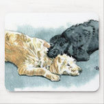 Labradoodles in Love Mousepad