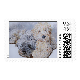 Labradoodles Two Postage Stamps