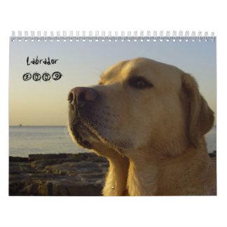 Labrador 2009 calendarios de pared