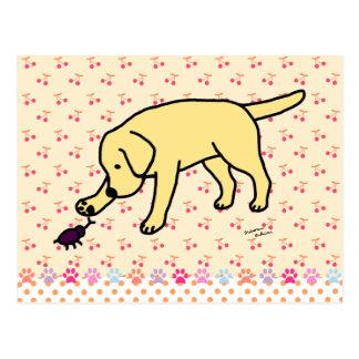 Labrador amarillo amistoso postales