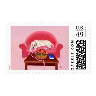 Labrador amarillo en el sofá rosado franqueo