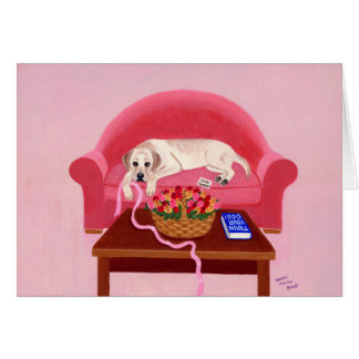 Labrador amarillo en el sofá rosado tarjetas