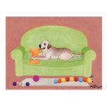 Labrador amarillo en el sofá verde postal