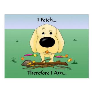 Labrador amarillo (laboratorios) - traigo… la post tarjetas postales