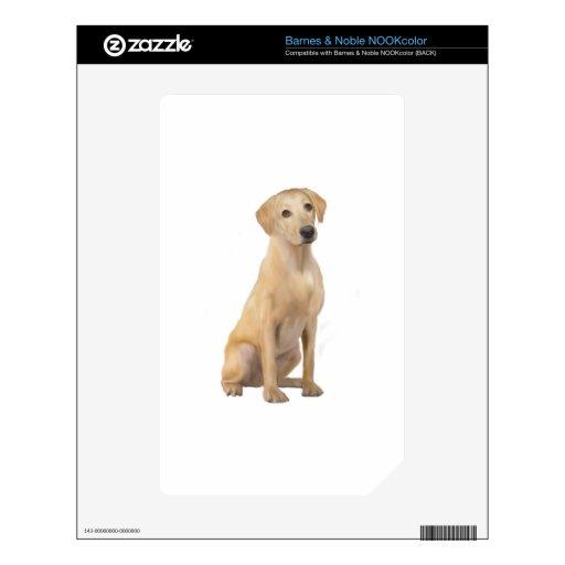 Labrador - amarillo (n) NOOK color calcomanía