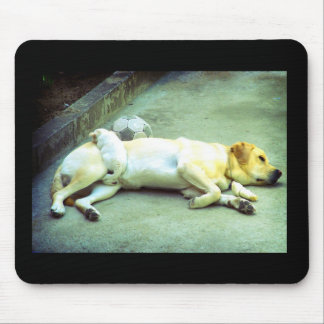 Labrador and cute puppy sleeping mouse pad