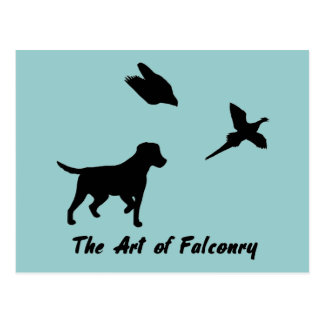 Labrador and Falconry Postcard