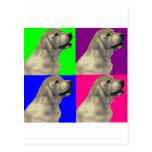 Labrador Bright Color Collage Postcard