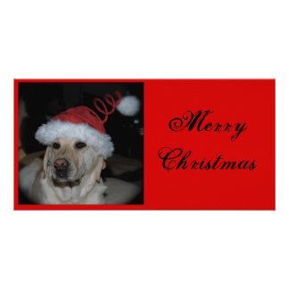 Labrador Christmas Picture Card