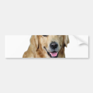 Labrador christmas-santa claus dog-santa dog-pet bumper sticker