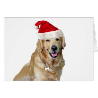 Labrador christmas-santa claus dog-santa dog-pet card