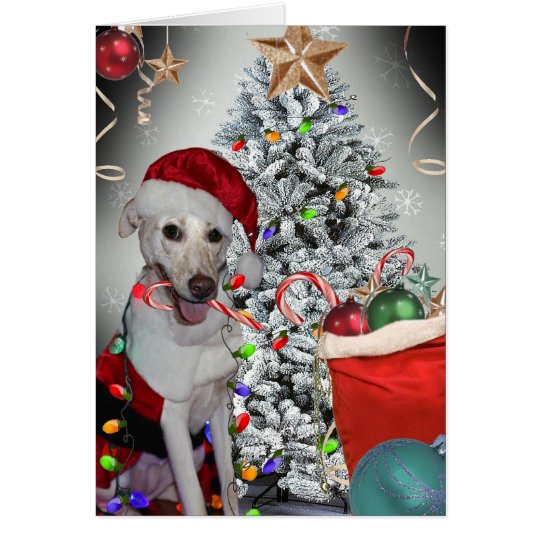 Labrador Christmas Tree Fun Card