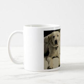 Labrador Cup