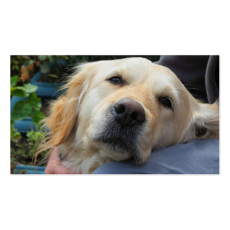 Labrador de amor tarjeta de visita