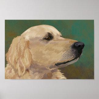 Labrador de oro póster