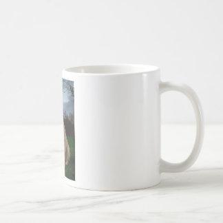 Labrador de oro taza de café