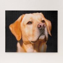 Labrador Dog. Jigsaw Puzzle