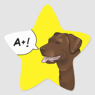 Labrador Dog Teacher Good Grade Reward Star Sticker