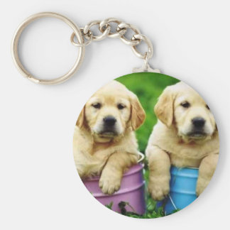 Labrador  dogs puppys  angie key chain