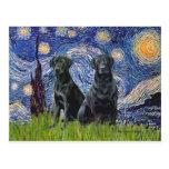 Labrador (dos negro) - noche estrellada postal