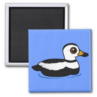 Labrador Duck (swim) 2 Inch Square Magnet