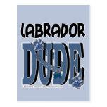 Labrador DUDE Postcard