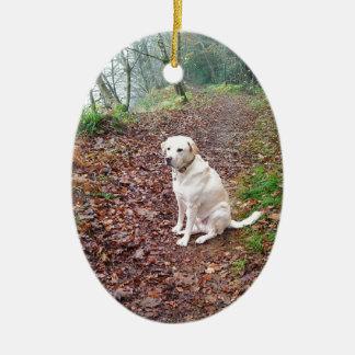 Labrador en los bancos del otoño adorno ovalado de cerámica