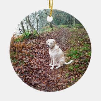 Labrador en los bancos del otoño adorno redondo de cerámica