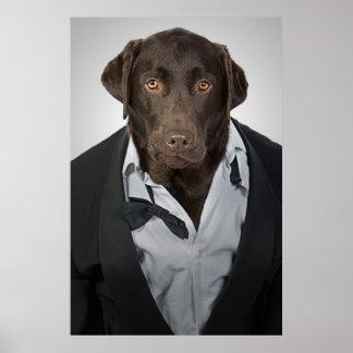 Labrador en smoking póster