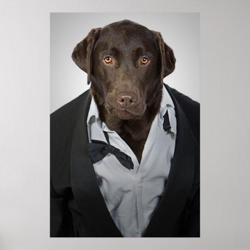 Labrador en smoking poster