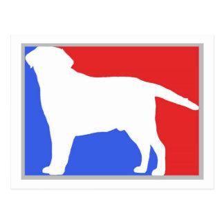 Labrador  exclusive design! postcard