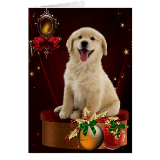 Labrador Golden Retriever Christmas Cards