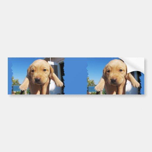 Labrador - GOOD MORNING! Bumper Stickers