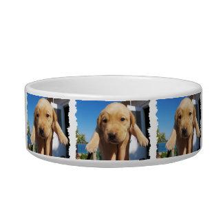 Labrador - GOOD MORNING! Cat Food Bowl
