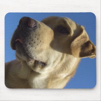 Labrador goofy face portrait mouse pad