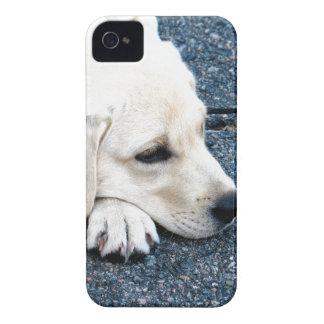 Labrador iPhone 4 Case-Mate Protector